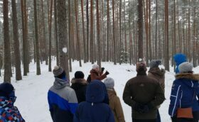 Winter days in Viru bog